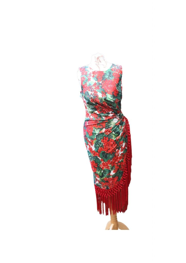 Geranium Print Fringed Dress